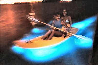 San Juan Bioluminescent Bay Kayak Tour
